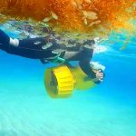 屋久島の海で。モジャコ漁終了!&流れ藻ウォッチもーちょい継続(笑)!