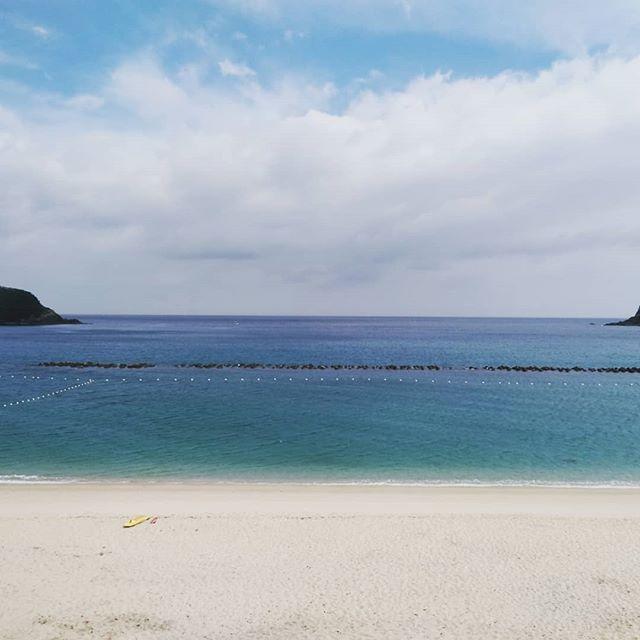 屋久島の海・川で